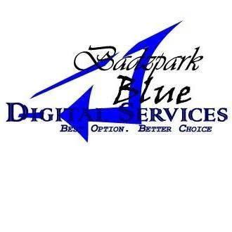 Blue Virtual IT Solutions